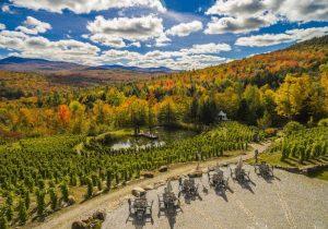 Vignoble chapelle ste agn s tourisme sutton for 300 lake terrace