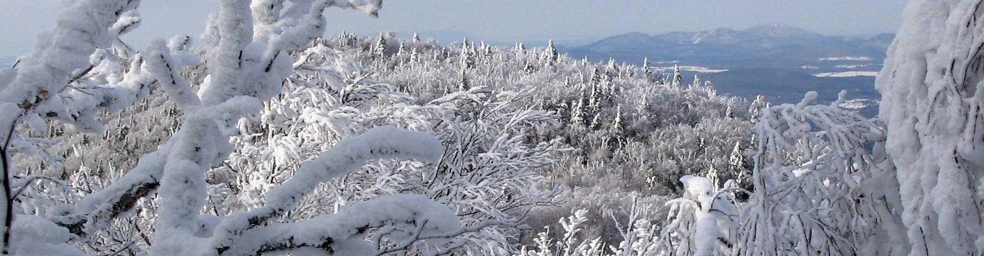 Tourisme Sutton : La randonnée d'hiver à Sutton