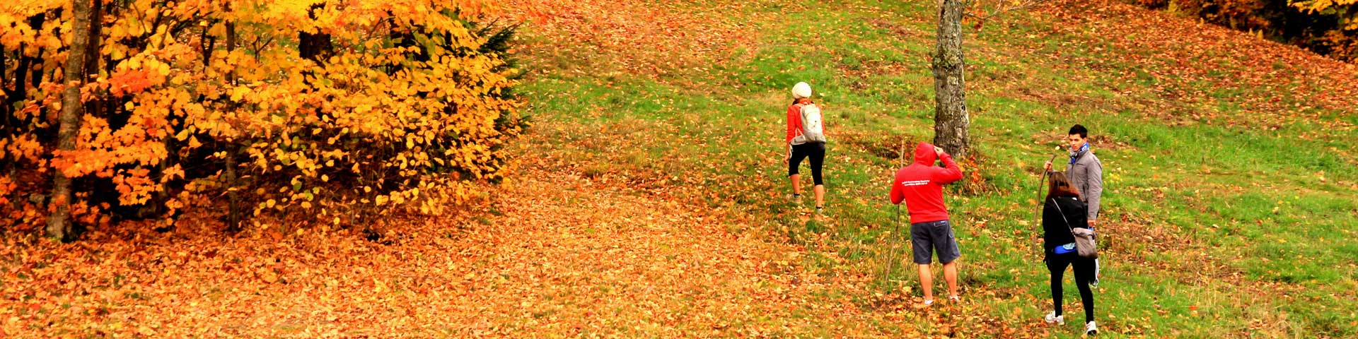 Tourisme Sutton : La randonnée à l'automne