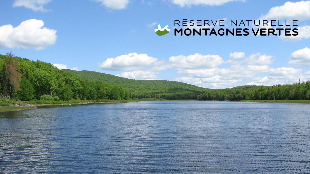 Réserve naturelle des Montagnes-Vertes (RNMV)