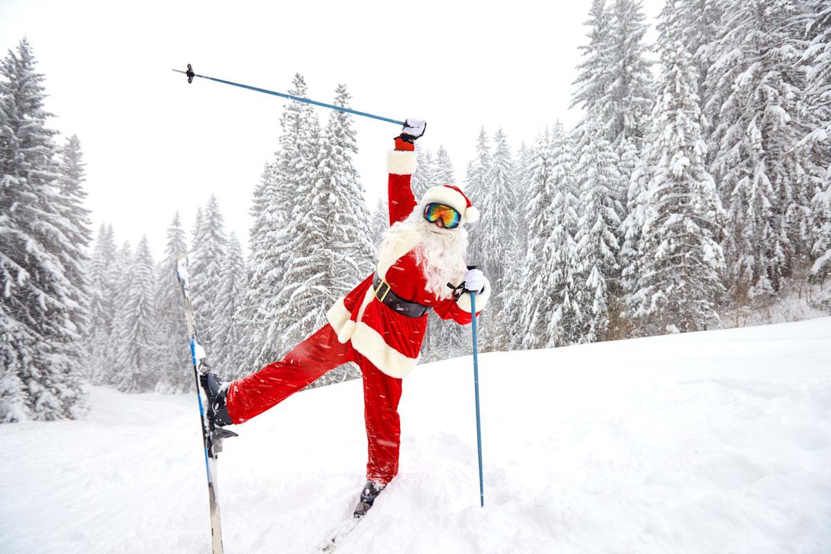 Offrir SUTTON pour Noël